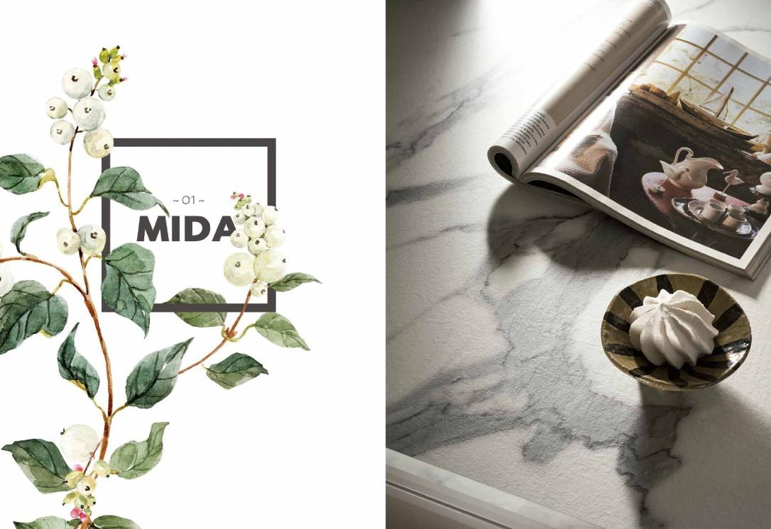 C-Artec-Mida+2017-005